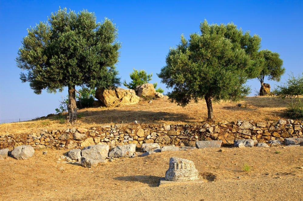 ερείπια από το ιερό του Ποσειδώνα στον Πόρο